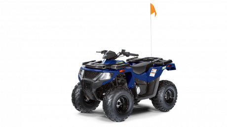 Arctic Cat ALTERRA 90 2021